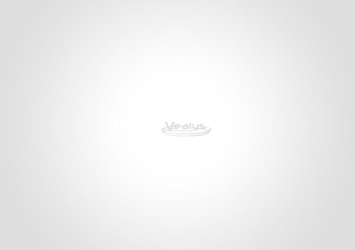 Télécharger ici notre plaquette commerciale Vealys
